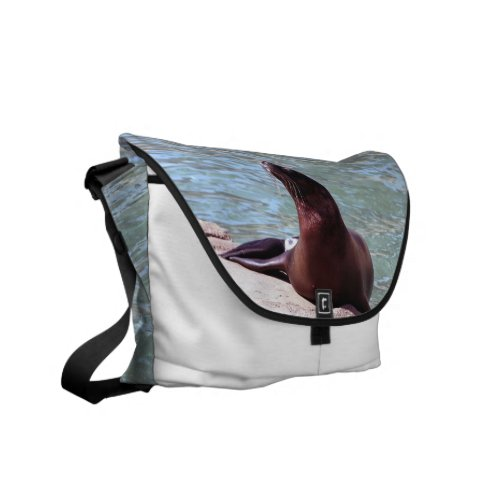 Seal Messenger Bag