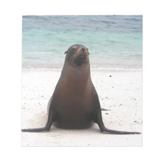 Seal Note Pads