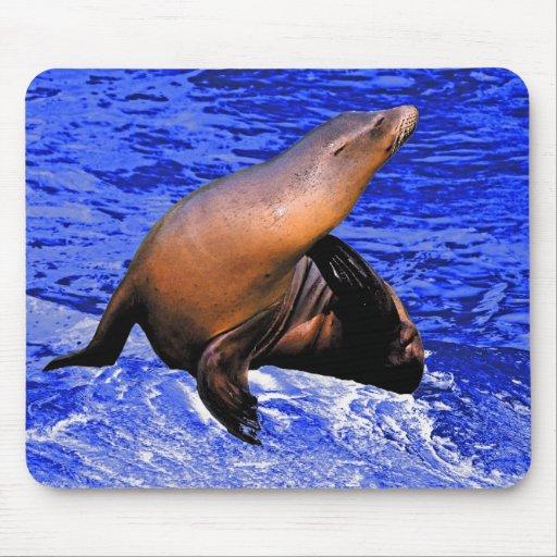 Seal on Rock with Deep Blue Sea Mousepad