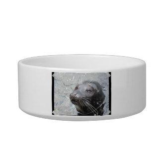 Seal Pet Bowl