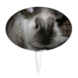 seal point rabbit head cute bunny photo cake topper