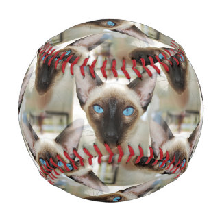 Seal Point Siamese Cat Piercing Blue Eyes Baseball