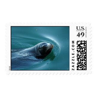 Seal Postage