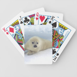 Seal Pup Bicycle Playing Cards