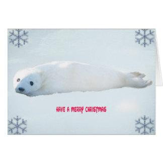 Seal Pup Christmas Card