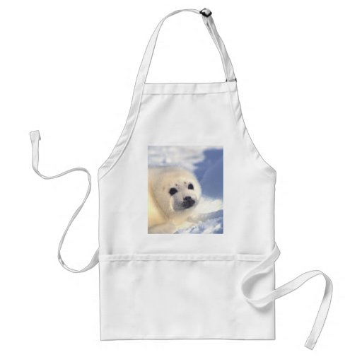 Seal Pup Face Aprons