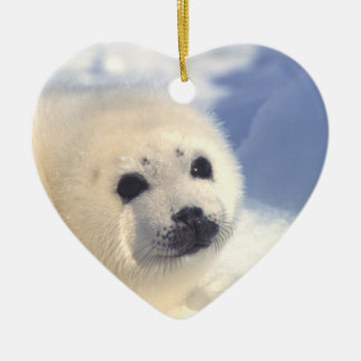 Seal Pup Face Ceramic Ornament