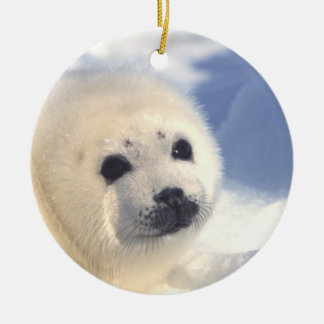 Seal Pup Face Ornament Christmas Tree Ornaments