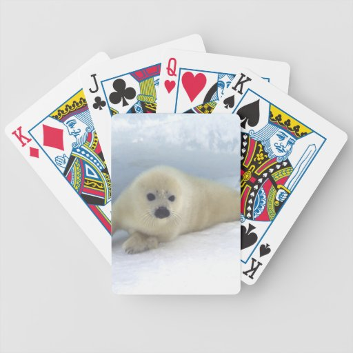 Seal Pup Bicycle Poker Cards