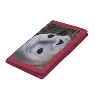 Seal Pup Tri-fold Wallet