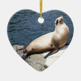 Seal Relaxing On A Rock Ceramic Ornament
