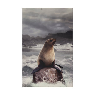 Seal Rock Stretched Canvas Prints