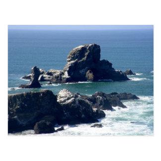 Seal Rock on the Oregon Coast Postcard