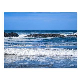 Seal Rock Oregon Coast On Pacific Ocean Postcard