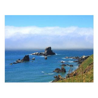 Seal Rock, Oregon Summer Vista Postcard
