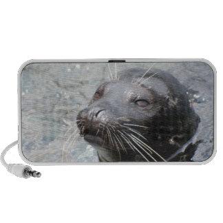 Seal  Speakers