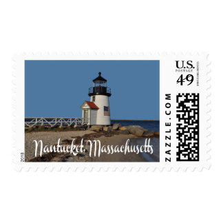 Seal Swimming Cape Cod Massachusetts United States Postage