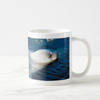 Seal Swimming Coffee Mug