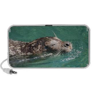 Seal Swimming Portable Speakers