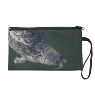 Seal swimming under the water 2 wristlet clutch