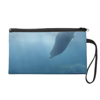 Seal swimming under the water wristlet clutches