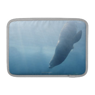 Seal swimming under the water sleeve for MacBook air