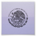 Seal the Government Mexico , Mexico Posters