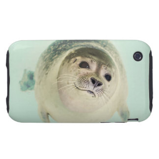 seal tough iPhone 3 case