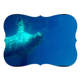 Seal Underwater 5x7 Paper Invitation Card
