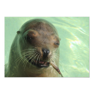 Seal with Fish Invitation