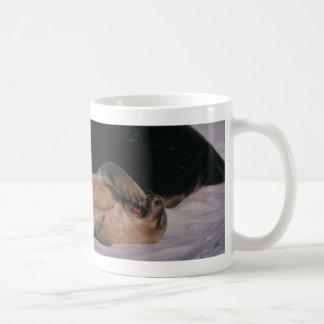 Seal Yawn Coffee Mug