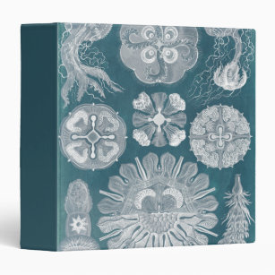 Blueprint of binders zazzle sealife blueprint iv 3 ring binder malvernweather Choice Image