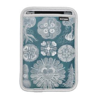 Sealife Blueprint IV iPad Mini Sleeve
