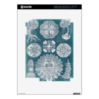 Sealife Blueprint IV Skins For iPad 3