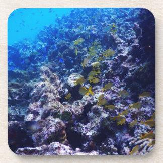 Sealife tropical posavasos de bebidas