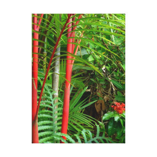 Sealing Wax Palms Stretched Canvas Print