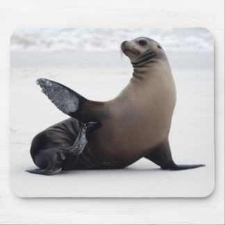 Sealion Mouse Pad