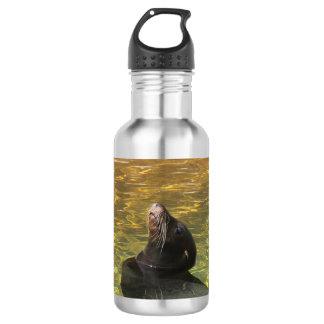 Sealion Stainless Steel Water Bottle
