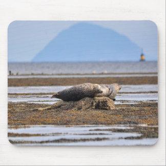 Seals and Ailsa Craig Mouse Pad