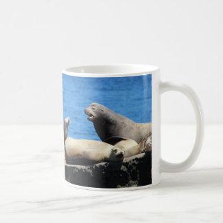 seals at La jolla beach in California Coffee Mugs