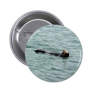 Seals In Monterey Button