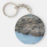 seals, ocean, oregon, key chain