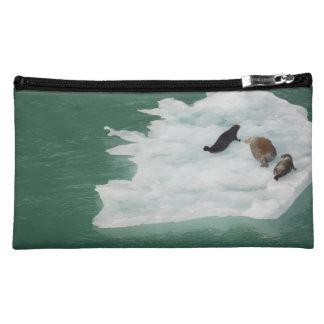 Seals on an Iceberg Bag