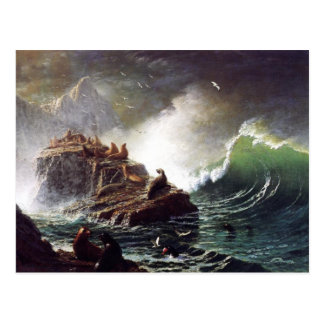 Seals on the Rocks by Albert Biestadt Postcard