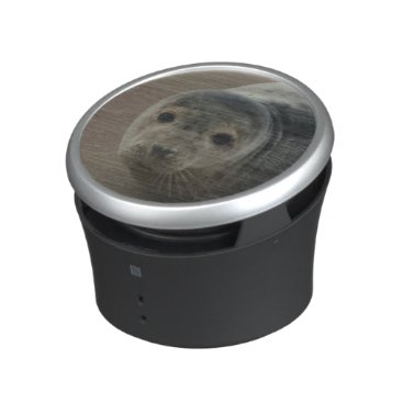 Beach Themed Seals rock baby seal pup bluetooth speaker