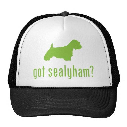 Sealyham Terrier Gorros