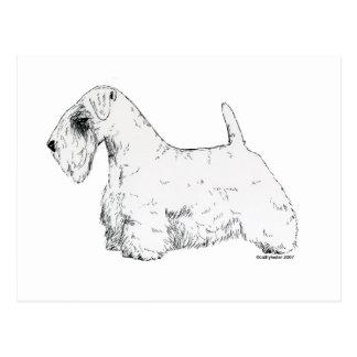 Sealyham Terrier Postal