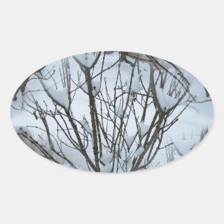 Seamless Icy Tree Bush Oval Sticker