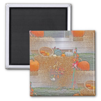 Seamless Pumpkins on Haystack Magnets