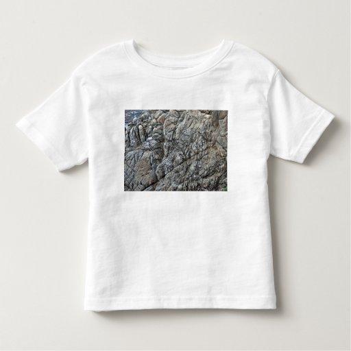 Seamless Rock Texture Detail Tshirts